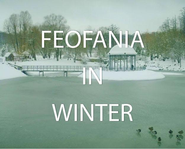 Feofaniya in winter